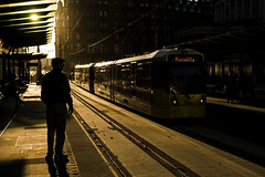 Watching the trams (Nigel Gresley) Tags: manchester metrolink sillhouette sunset trams saint peters square