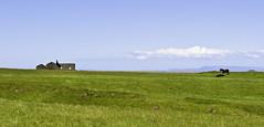 Andstæður / Contrasts (geh2012) Tags: horse clouds iceland gras contrasts ísland snæfellsnes ský himinn eyðibýli geh hestur hross andstæður gunnareiríkur
