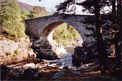 Raging waters. 2 (Ishbelle 31) Tags: bridge trees light sky dog brown water stone silver river moss shadows heather hills foam birch