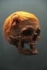 Mann von Osterby (michael_hamburg69) Tags: man male museum germany deutschland skull schleswigholstein landesmuseum beheaded schleswig behead schädel enthauptet moorleiche schlosgottorf suebenknoten schädelvonosterby skullofosterby fundvon1948 suebenknotenfrisur