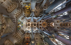 Sagrada Familia (John_Kennan) Tags: barcelona color colour church window spain cathedral interior stainedglass catalonia ceiling squid gaudi sagradafamilia