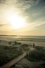 (zamax4) Tags: sunset beach birds island playa pajaros peninsula isla veldes