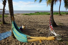 Awala Yalimapo Beach French Guiana (João Leitão ★ Nomad Revelations) Tags: beach frenchguiana awalayalimapo