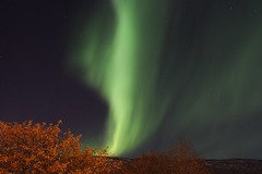 Aurora borealis (Rolf Birger) Tags: iceland auroraborealis northernlight