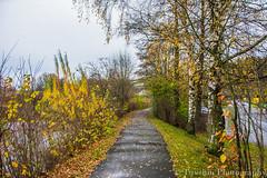 Autumn colors /   ( ) Tags: way bayern autumncolors rmany badkotzting