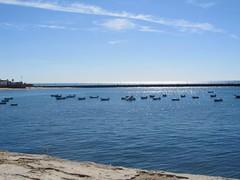 Playa de la Caleta (Lauragalcon) Tags: santa sea espaa beach de la mar catalina andaluca spain barca barco barcos playa andalucia fortaleza cadiz andalusia barcas cdiz castillo caleta calina playadelacaleta polvorn