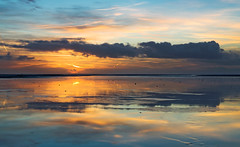 Sunset (Dani℮l) Tags: netherlands danielbosma schiermonnikoogsunsetreflection