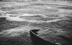 Consumed (Roj) Tags: uk blackandwhite bw texture water monochrome wales mono boat wind powershot ripples sunk conwy northwales gogleddcymru canong1x photographersontumblr
