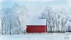 snow days (Pattys-photos) Tags: winter red snow barn frosty idaho
