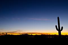 Sunset in desert (stephen.lustig) Tags: sunset arizona southwest desert tucson
