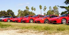 Ferraris on the Foreshore (2) (AAron Metcalfe) Tags: red car ferrari perth wa foreshore