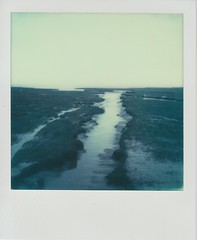 The Creek (ifleming) Tags: polaroid sx70 sonar grangeoversands impossibleproject 600colour