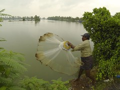 Fishing (in Kerala)  - 17 (Rajesh_India) Tags: india net rain fishing kerala monsoon nets kochi vocation