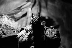 SkullSplitter II (TaglessKaiju (on Hiatus)) Tags: toy photography action collection figure mcfarlane skullsplitter