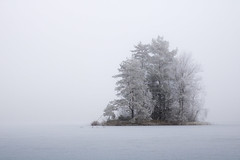 The little frosty island (Anders Bromell) Tags: borås pickesjön frostig frosty
