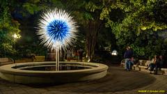 Atlanta, GA: Chihuly glass blown sculptures at the Botanical Gardens (nabobswims) Tags: atlanta botanicalgarden dalechihuly ga glass hdr highdynamicrange lightroom nabob nabobswims photomatix sculpture sonya6000 us unitedstates georgia