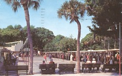 Mirror Lake Shuffleboard Courts - St. Petersburg, Florida (The Cardboard America Archives) Tags: vintage 1957 shuffleboard stpetersburg florida