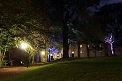 Der Park (Klaus R. aus O.) Tags: baum park schlosspark nacht laubbaum bunt licht ast berg laub herbst serie