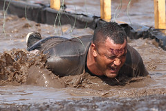 Shocking! (Howard Ferrier) Tags: oceania elements electriceel crawling australia race wire people electricity sportleisure timber male competitor emotions sunshinecoast event pain seq water obstacle mud caloundra toughmudder queensland crawl recreation