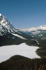 Banff National Park - Icefield Parkway - Peyto Lake (astroaxel) Tags: kanada alberta banff national park icefield parkway peyto lake see
