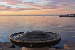 Trieste - Molo Audace - La Rosa dei Venti (boisderose) Tags: sunset tramonto luce light mare sea trieste 2016 rosadeiventi moloaudace boisderose