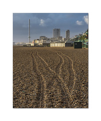 Making tracks (Explored) (hehaden) Tags: beach pebbles tracks britishairways i360 brighton sussex