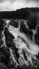 film-4 (LeeJayDee) Tags: film waterfall cairns australia bw