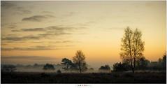 A new day awakens (nandOOnline) Tags: ochtend strabrecht december morning nature natuur twilight landschap schemering strabrechtseheide sunrise vorst fog nevel frost dauw landscape mist zonsopkomst koud cold