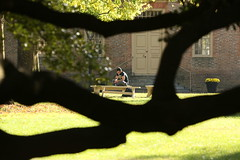 Framed perfectly (William & Mary Photos) Tags: williamandmary wm williammary collegeofwilliamandmary collegeofwilliammary grounds scenery fall