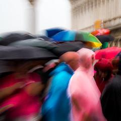 PARAPLUIES ET PONCHOS (zventure,) Tags: pluie parapluie venise sanmarco couleurs venisesept2016 venice rose bleu multicolor file flou rouge