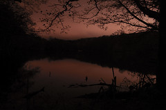 DSC09464 (weekend_vagabond) Tags: bingley west yorkshire night photography silhouette water reflect reflection slow long expose exposure trees branches time pano panoramic st ives estate