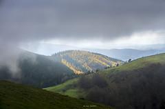 Luz y oscuridad (EXPLORE) (Jabi Artaraz) Tags: jabiartaraz jartaraz zb euskoflickr luz oscuridad niebla negro color polpol