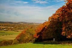 Autumn colour (jjays7155) Tags: eos7d sigma1750mm