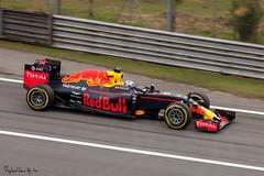 Daniel Ricciardo / Red Bull (Raphael Leone Aguilar) Tags: formula1 formula 1 brazil brasil interlagos 2016 qualify qualificao