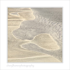 _MG_6267- In the Flow #1 (cheryl.hamer) Tags: impressionist abstract flowing water birds beaches wales anglesey