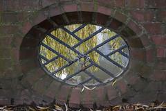 Brightness - 032_Web (berni.radke) Tags: brightness helligkeit brilliance glanz klarheitleuchtenheiterkeitstrahlen luminosit jasno luminosit brillo