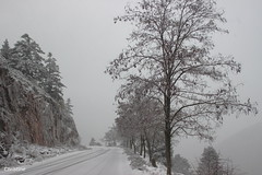 IMG_7633 (christinehag) Tags: road snow neige route trees arbres