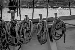 Aboard the Denis Sullivan (PhotoArtMarie) Tags: denissullivan ship ropes shore water