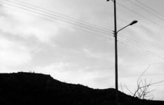 (vico.garcia) Tags: blackandwhite bw byn blanco y negro black white monocromo film ilford canon t70 50mm f18