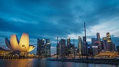 Waterfront skyline (elenaleong) Tags: mbs marinabay skyline singapore bluehour sundown elenaleong artsciencemuseum asm marinareservoir