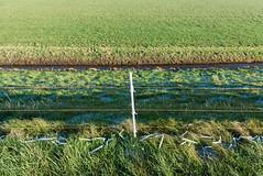 (Arthur van Beveren) Tags: nederland netherlands niederlande holland paysbas hollanda paesibassi paisesbajos overrijsel blokzijl winter cold kou ijs cable ice elektrisch schrikdraad paaltje pegels vriezen