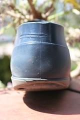 Dunlop  39 (welliesfan1) Tags: vintage out ripped worn wellies galoshes rubberboots gummistiefel wellingtons botas trashed wornout dunlop gomma fertig leaky hevea versleten laarzen stivali wellworn stvlar vredestein   regenstiefel kaplaarzen rubberlaarzen gummisteifel bottescaoutchouc