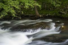 Smoky Mountain Stream (Bernie Kasper) Tags: travel summer white storm color green art water creek river landscape outdoors raw unitedstates getty gsmnp greatsmokymountainnationalpark berniekasper curatorsset