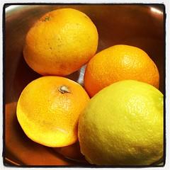 #mandarin #oranges + #lemon #fruit (daddyPrimate) Tags: fruit lemon mandarin oranges uploaded:by=flickstagram instagram:photo=31969668892300805021107038