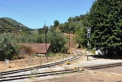 Regua Vila Real Portugal 10th August 2013 (loose_grip_99) Tags: railroad abandoned portugal real tracks rail railway trains vila disused gauge narrow regua metre linhodocorgo