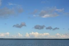 Need Eesti pilved (anuwintschalek) Tags: blue sea summer sky white clouds island see meer estonia sommer himmel wolken august baltic insel blau nuages weiss ostsee meri itmeri saar eesti suvi estland saaremaa taevas valge 2013 18200vr pilved sinine lnemeri d7k nikond7000 taasiseseisvumispev viksevinatamm