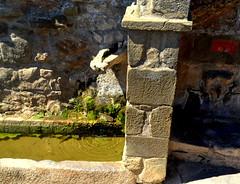 Font de Biosca, entrada al poble. (Angela Llop) Tags: spain fuente eu catalonia font catalunya lasegarra