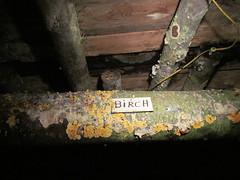 (William Keckler) Tags: underground ashland mule coalmining schuylkillcounty anthracite explanations anthracitemining ashlandmine miningmule