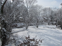 """Aftermath of January 26, 2011 """"Thundersnow"""" (SchuminWeb) Tags: county trees winter snow storm ice weather silver spring md ben snowy web hill snowstorm january maryland neighborhood thunderstorm montgomery aspen storms thunder thunderstorms snowstorms aspenhill 2011 thundersnow schumin schuminweb"""