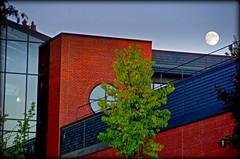 Champlain Campus Scenes (Champlain College | Stephen Mease) Tags: buildings vermont timeline burlingotn champlainviewfall2013